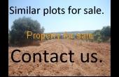 Kissonerga land for sale, close to the sea.