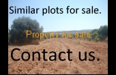 A large plot for sale in Chloraka, very close to the main road