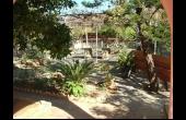 L2625, Three bedroom villa in Peyia