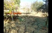 PP269, Land for Sale in Tsada