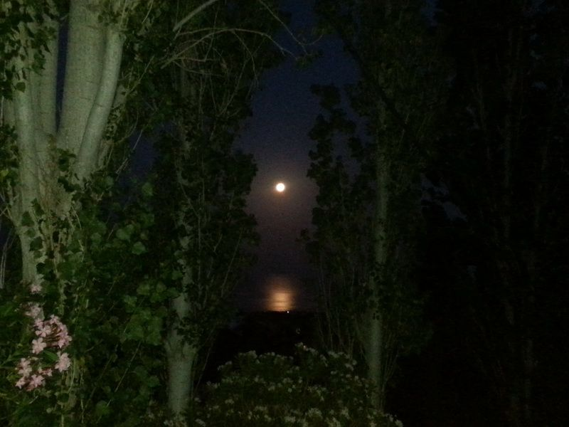 A moonlit night in Paphos, Cyprus, taken in September 2016